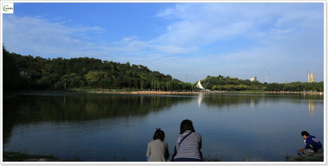 濮阳国家湿地公园